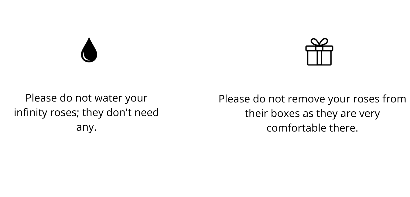 please-do-not-water-your-infinity-roses-they-don-t-need-any..png