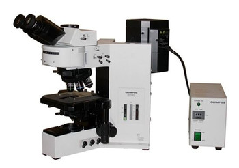 Olympus BX60 Microscope Transmitted Fluorescence