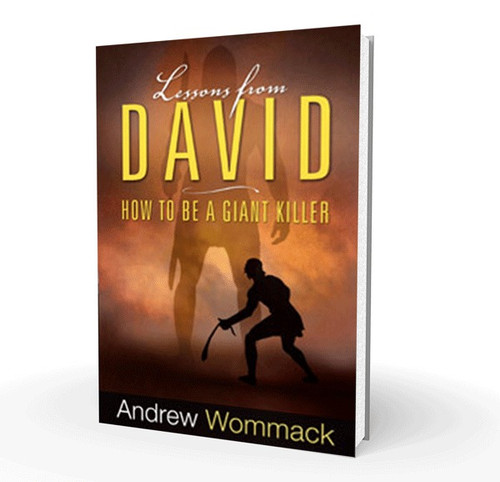 Book - Lessons From David