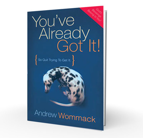 Book - You've Already Got It
