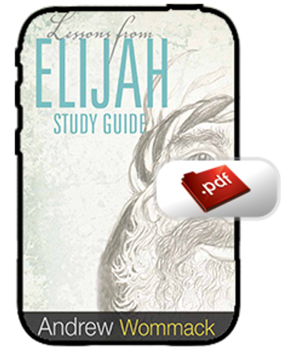 Study Guide E-Book - Lessons from Elijah (PDF)