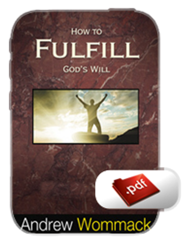 Study Guide E-Book - How to Fulfil God's Will (PDF)