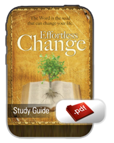 Study Guide E-Book - Effortless Change (PDF)