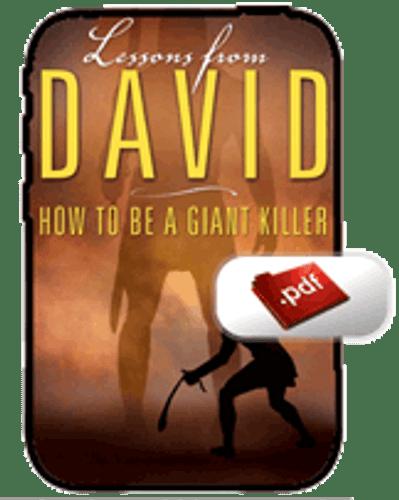 E-Book - Lessons from David (PDF)