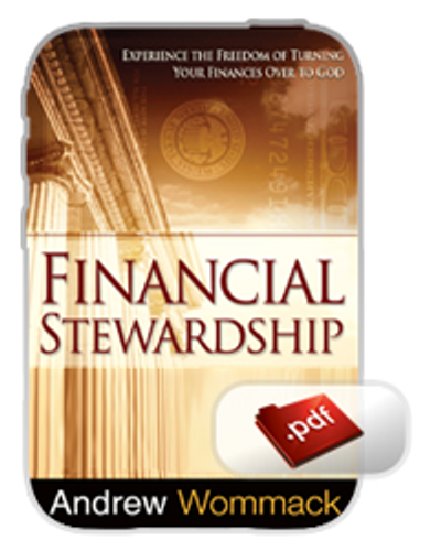 E-Book - Financial Stewardship (PDF)