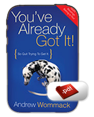 E-Book - You've Already Got It (PDF)