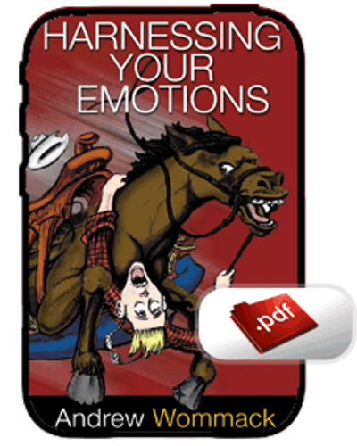 E-Book - Harnessing Your Emotions  (PDF)