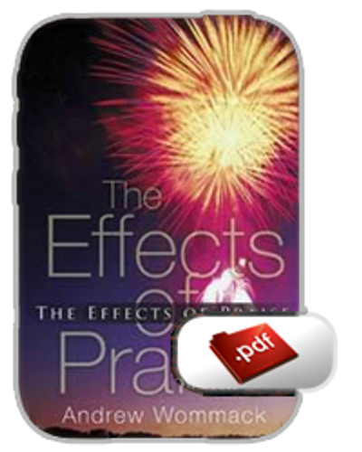 E-Book - The Effects of Praise (PDF)