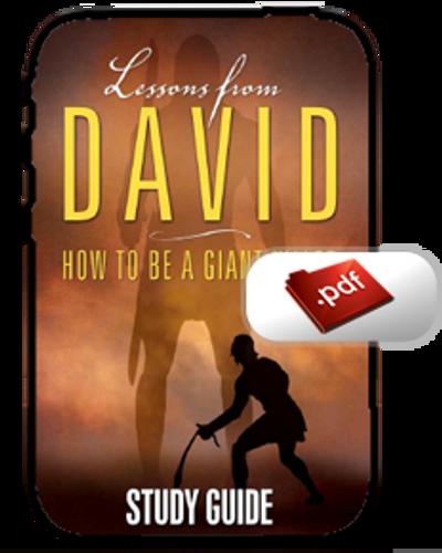 Study Guide E-Book - Lessons from David (PDF)
