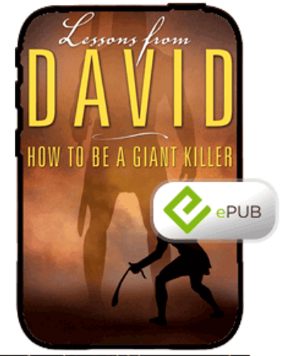 E-Book - Lessons From David (ePub)
