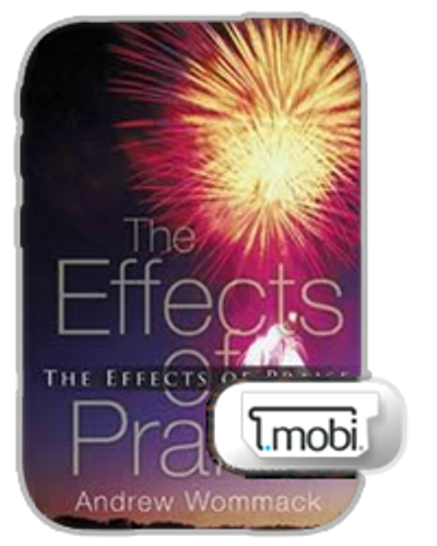 E-Book - Effects of Praise (Mobi)