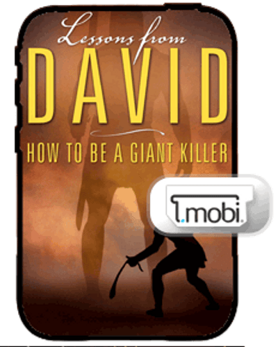 E-Book - Lessons From David (Mobi)
