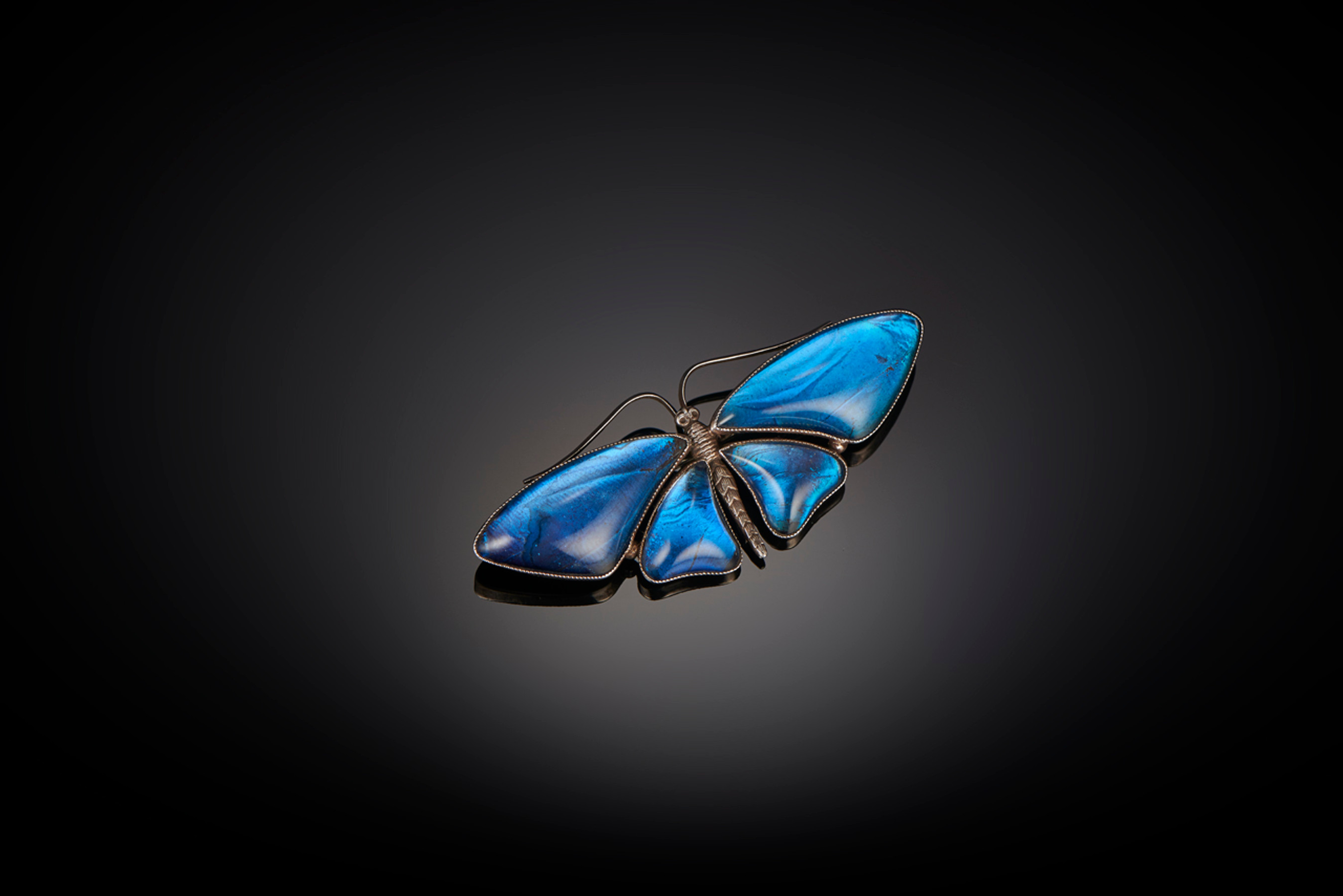 Butterfly Wing Brooch