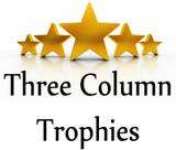 3 Column Trophies