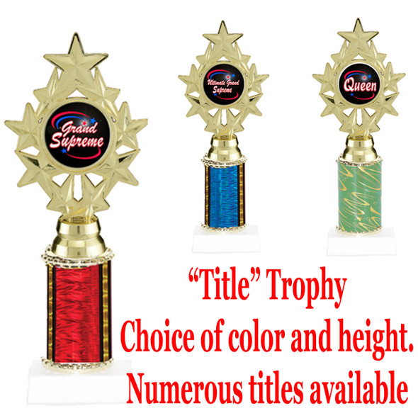 """Title"" Specific trophy.  Numerous titles available.  Choice of color, trophy height and title.  Height starts at 10""  (ph75)"