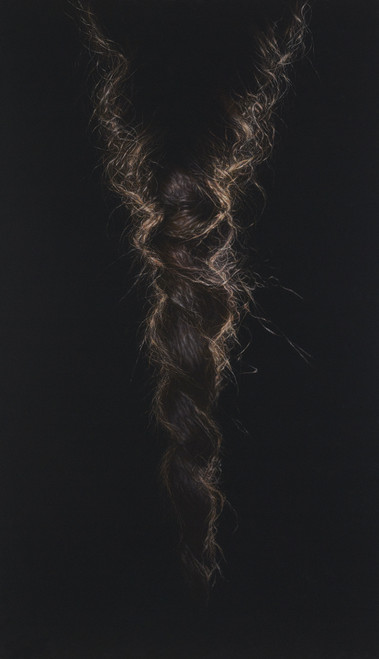 Braid 2010 by Oh Jeong Il. 2010. Acrylic on linen by a single strand brush. Painting.