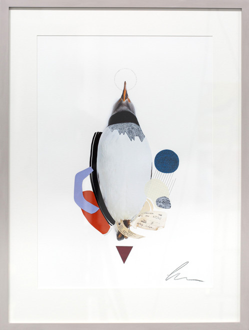 Puffin (Rising Scottish Sea Temperatures) by Lucy Stevens. 2021. Photography, mixed media and collage on 310gsm cotton rag paper. Abstract.