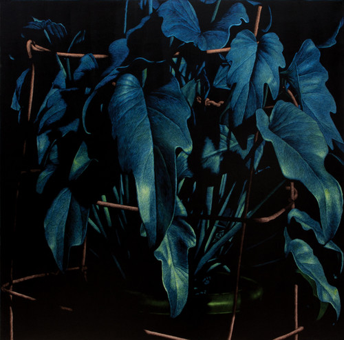 nameless plant 26 by Song Youngkyu. 2012. Acrylic on canvas.
