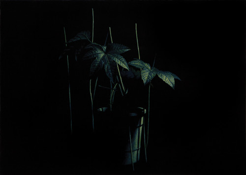 nameless plant 25 by Song Youngkyu. 2011. Acrylic on canvas.