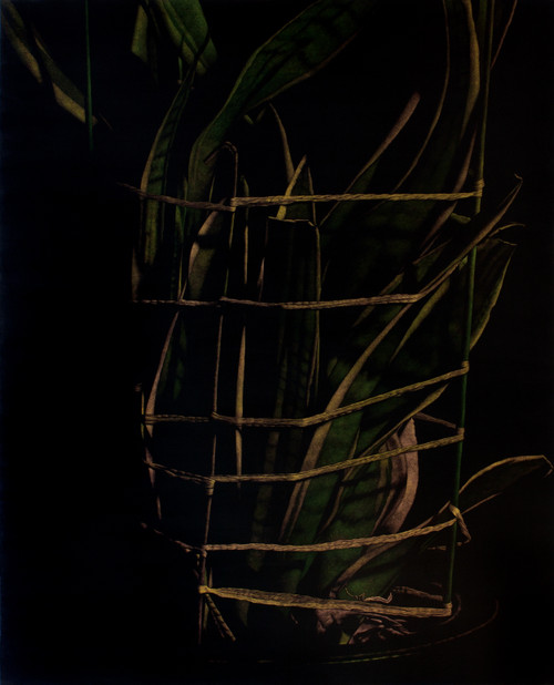 nameless plant 20 by Song Youngkyu. 2010. Acrylic on canvas.