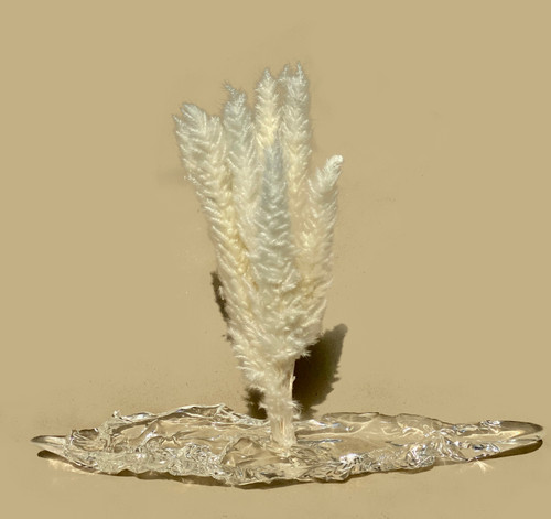 Invisible Support VII by Angela Yanjun Chen. 2021. Resin and reed. Sculpture.