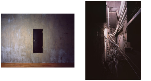 INTERWIRED I, II by Soyoung Park. 2016. Pigment print, diptych. Edition: 1/3