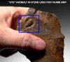 M383 - RARE FINEST  MUSEUM EXAMPLE EGYPTIAN ACHEULIAN HAND AXE WITH UNUSUAL NATURAL ANIMISTIC FEATURE