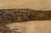 ARCHEGOSAURUS PERMIAN AMPHIBIAN FOSSIL