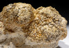 OLIGOCENE FOSSIL STROMATOLITE CYANOBACTERIA BALL COLONIES FROM AN ANCIENT LAKE  *ST028