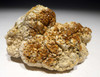 OLIGOCENE FOSSIL STROMATOLITE CYANOBACTERIA BALL COLONIES FROM AN ANCIENT LAKE  *STR584