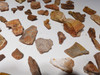 LARGE COLLECTION OF 68 FOSSIL BONES AND TEETH FROM DINOSAURS REPTILES AND SHARKS  *BONELOT57