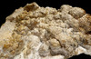 FASCINATING LARGE NATURAL FOSSIL STROMATOLITE BACTERIA COLONY FROM A PREHISTORIC LAKE  *STX504