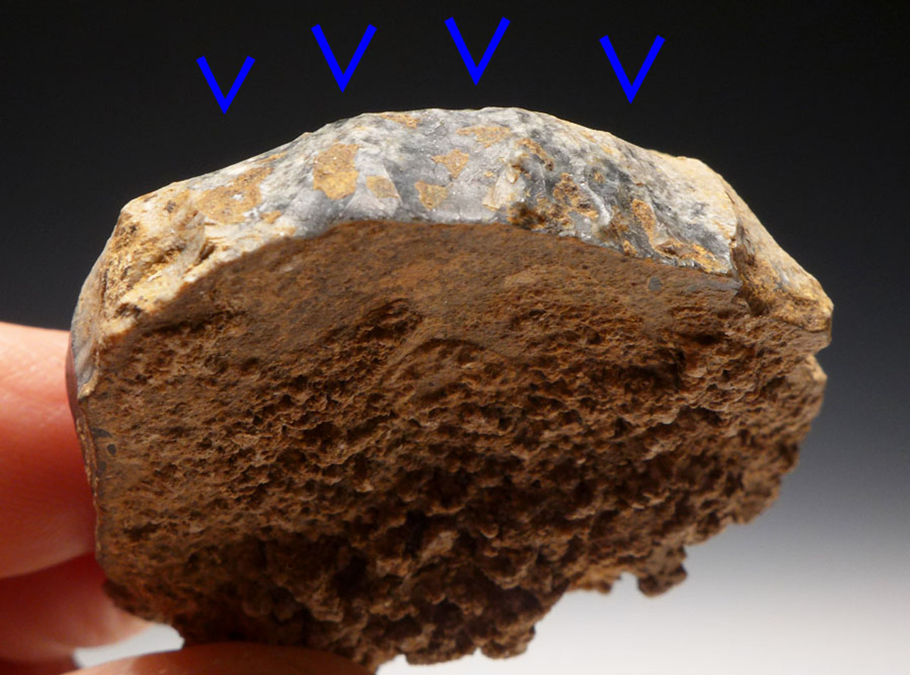 M304 - ROBUST FLINT NEANDERTHAL MOUSTERIAN RABOT PLANING SCRAPER FROM FRANCE