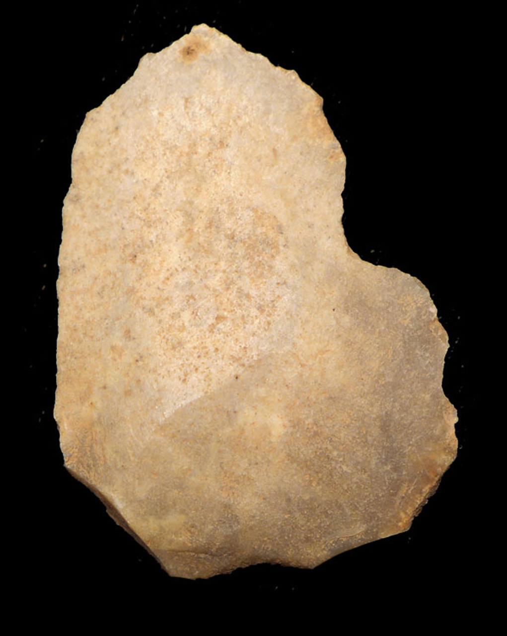 M301 - NEANDERTHAL MOUSTERIAN CONCAVE NOTCH SCRAPER FLINT TOOL FROM FRANCE