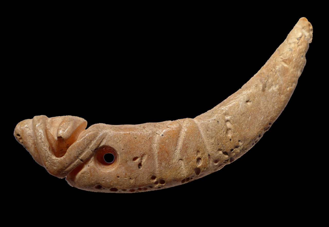 PC226 - LARGE PRE-COLUMBIAN SPONDYLUS SHELL CARVED PENDANT OF A DOG