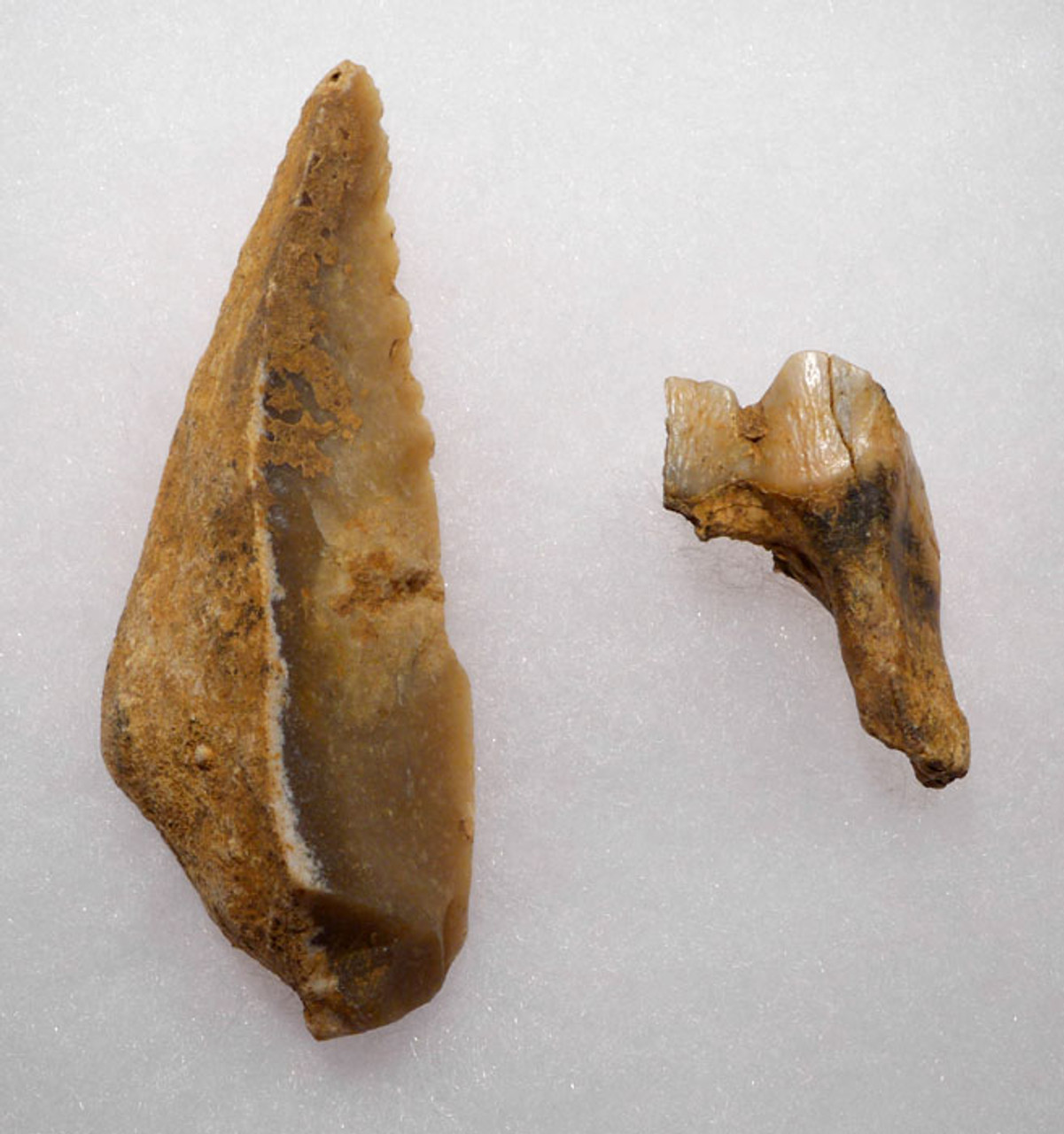 M342 - VERY RARE NEANDERTHAL MOUSTERIAN FLINT KNIFE FOUND WITH FOSSIL REINDEER TOOTH FROM A ROCK SHELTER IN FRANCE
