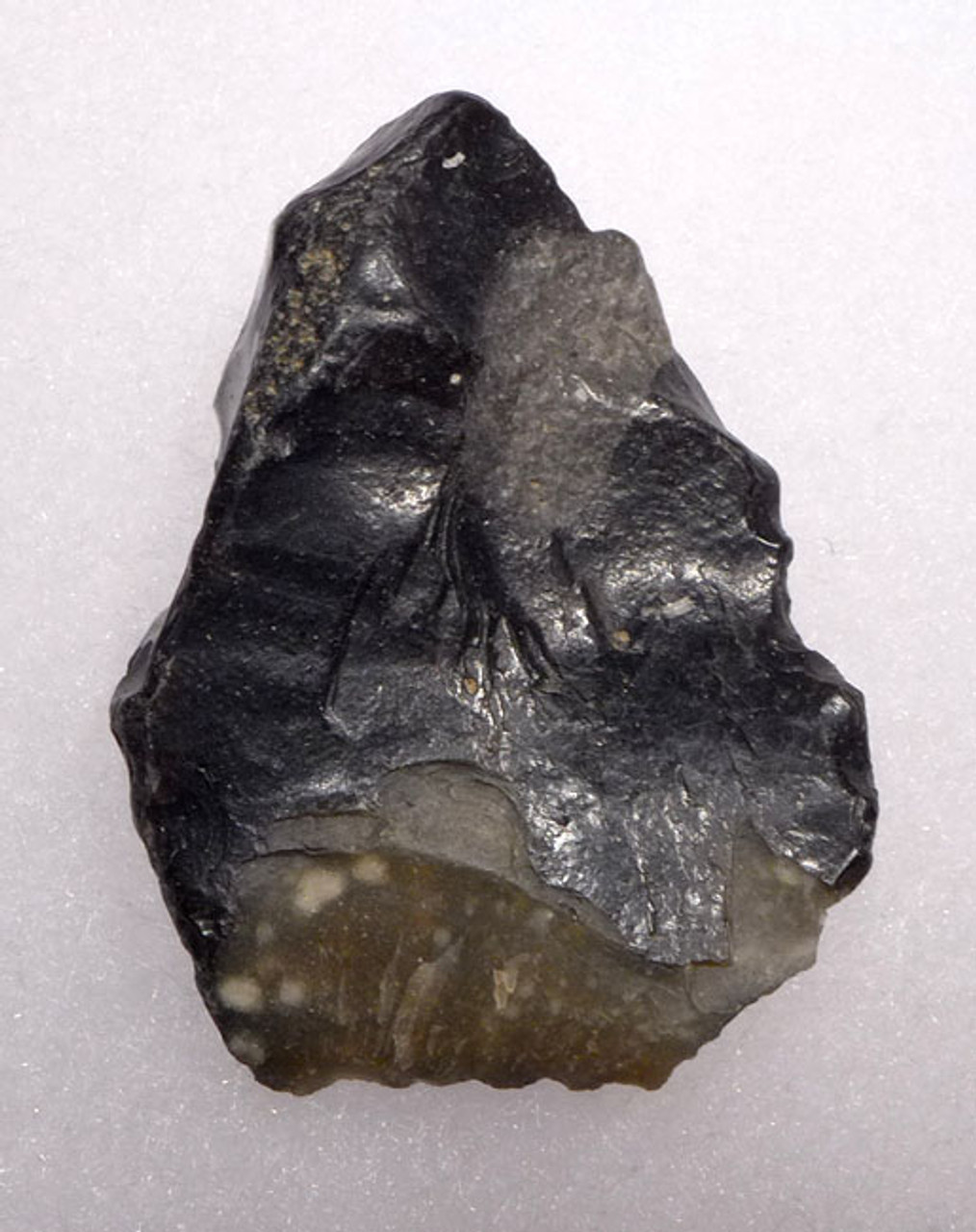CL002 - RARE CLACTONIAN FLINT FLAKE SCRAPER TOOL FROM NORTH EUROPE MADE BY HOMO ERECTUS