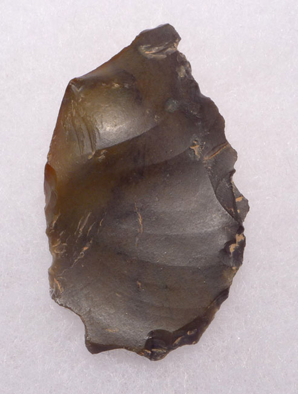 M350 - NEANDERTHAL MOUSTERIAN FLINT SAW DENTICULATE FLAKE TOOL FROM FRANCE