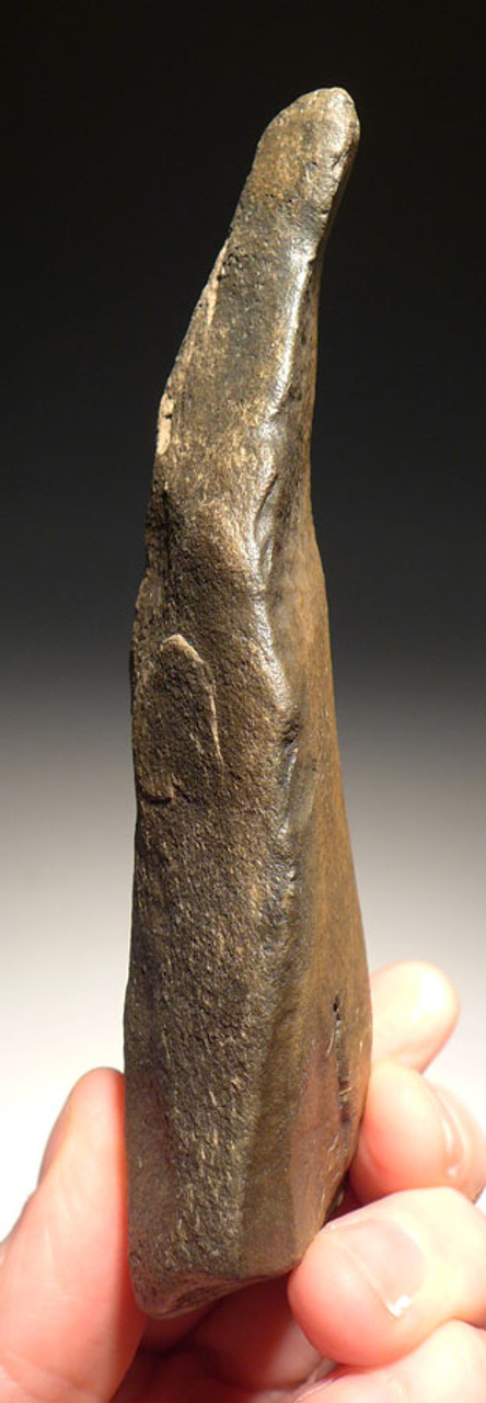 ACH210  - PREHISTORIC STONE ACHEULIAN KNIFE BLADE TOOL MADE BY HOMO ERGASTER (ERECTUS) FROM NW AFRICA