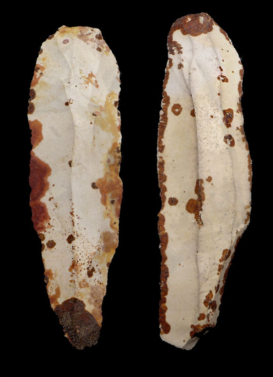 N164 - FINEST PAIR OF COLORFUL UNBROKEN LONG FLINT DANISH NEOLITHIC STONE KNIFE BLADES