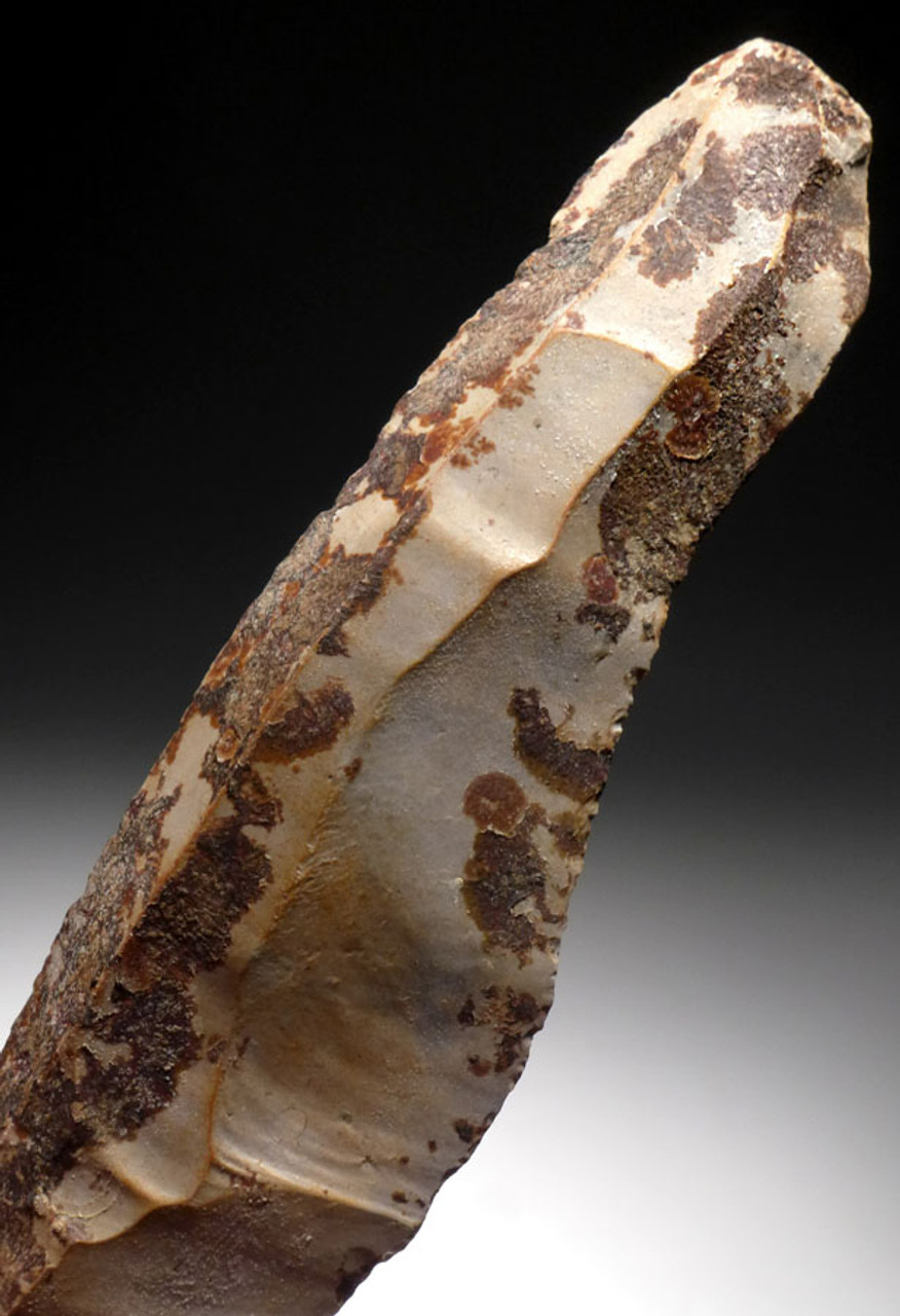 N162 - FINEST COLORFUL UNBROKEN LONG FLINT DANISH NEOLITHIC STONE KNIFE BLADE