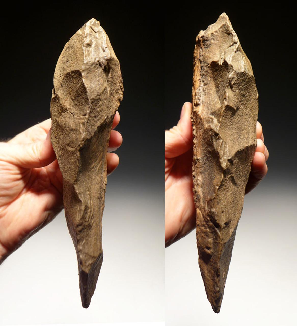 ACH224 - LARGE MUSEUM GRADE MASTERPIECE AFRICAN ACHEULIAN HAND AXE MADE BY HOMO ERECTUS (ERGASTER)