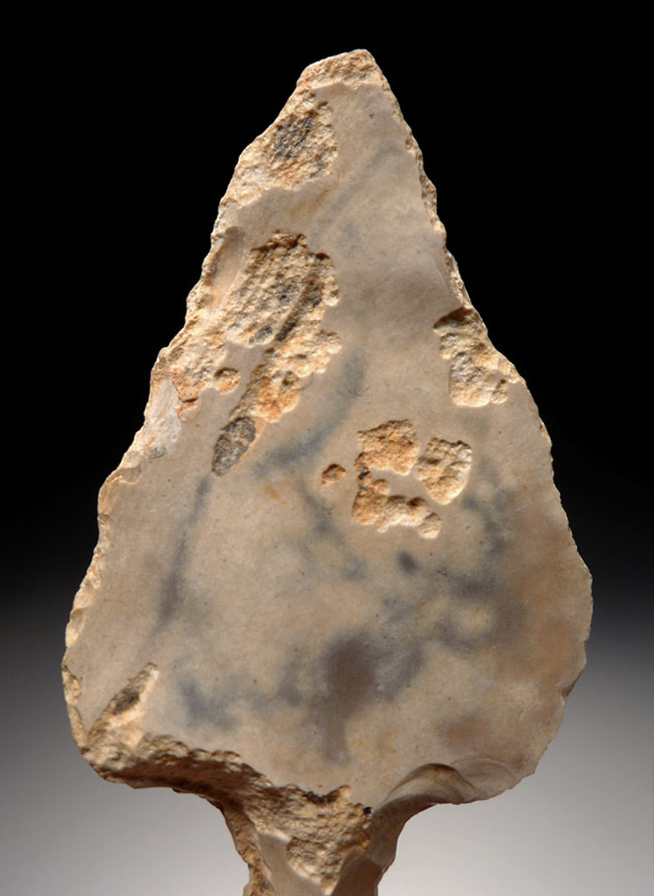 AT075 - RARE PETRIFIED WOOD MIDDLE PALEOLITHIC ATERIAN TANGED POINT - OLDEST KNOWN ARROWHEAD
