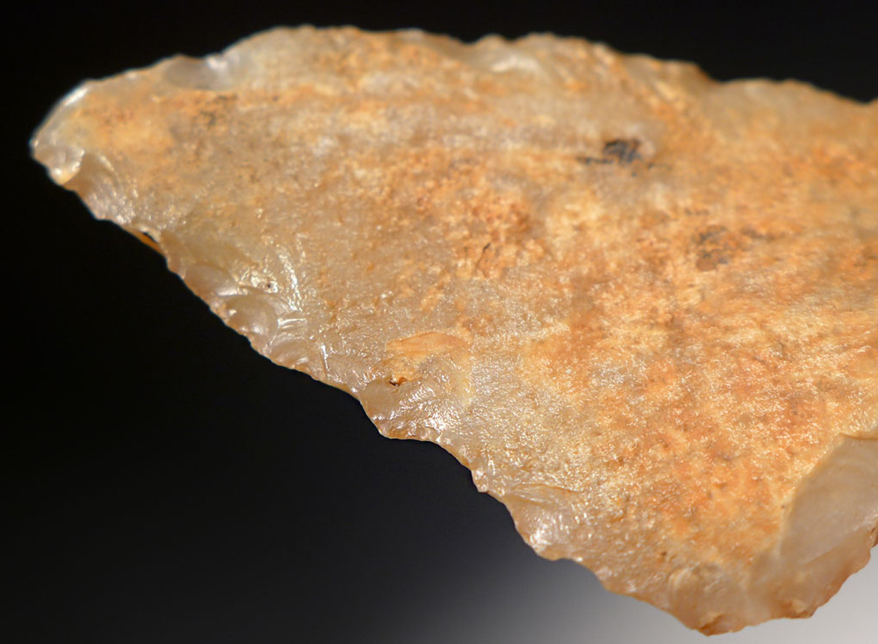 AT072 - CHOICE GRADE TRANSLUCENT MIDDLE PALEOLITHIC ATERIAN TANGED POINT - OLDEST ARROWHEAD