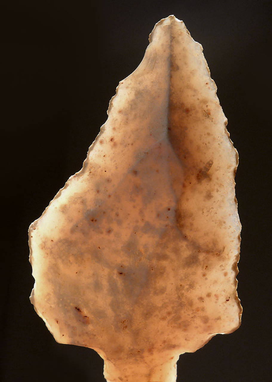 AT083 - ONE OF OUR FINEST - LARGE TRANSLUCENT ATERIAN MIDDLE PALEOLITHIC TANGED POINT MADE OF RARE CHALCEDONY