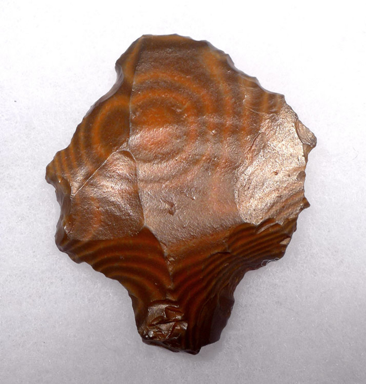 AT082 - ONE OF OUR BEST PETRIFIED WOOD MIDDLE PALEOLITHIC ATERIAN TANGED POINT - OLDEST KNOWN ARROWHEAD