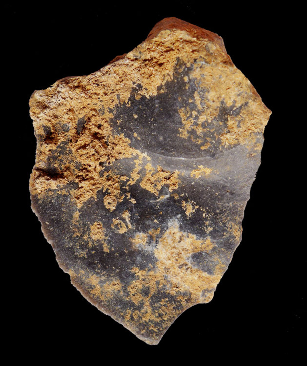 M368 - SUPERB LARGE MOUSTERIAN NEANDERTHAL CONVEX SIDE SCRAPER TOOL FROM FRANCE