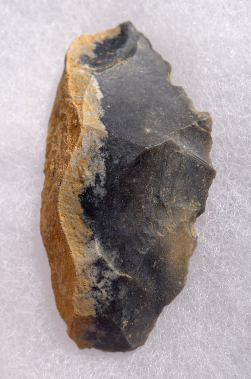 M371 - CHOICE NEANDERTHAL MOUSTERIAN FLINT SAW DENTICULATE FLAKE TOOL FROM FRANCE