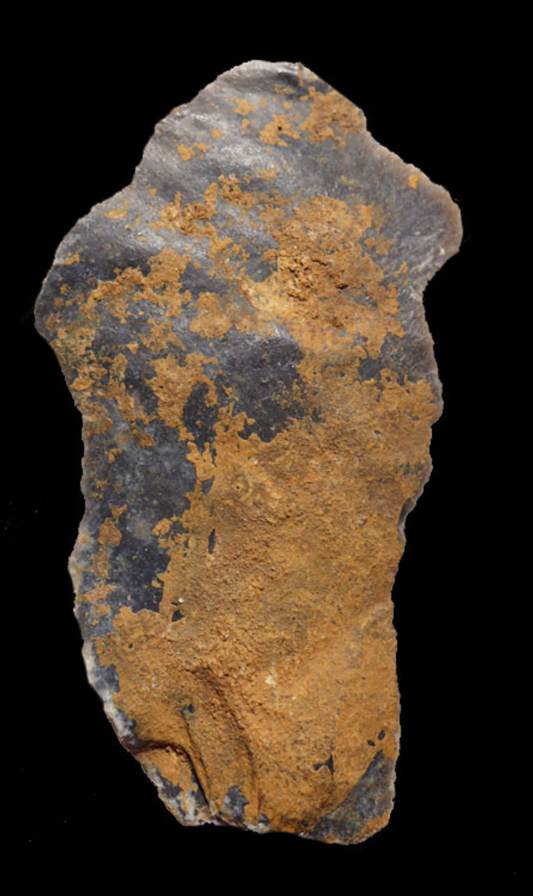 M377 - FINEST RARE DOUBLE NEANDERTHAL MOUSTERIAN FLINT SAW DENTICULATE TOOL FROM FRANCE