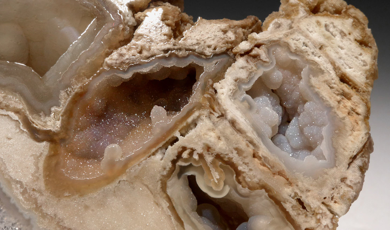 """PCOR003 - ULTRA-RARE LARGE """"DIAMOND CAVE"""" FOSSIL AGATIZED CORAL COLONY GEODE - BEST OF A HUGE COLLECTION"""